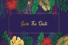 Cartão de verão Excepto a tâmara Folhas de palmeira Fotografia de Stock