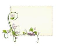 Cartão decorado do vintage Imagem de Stock