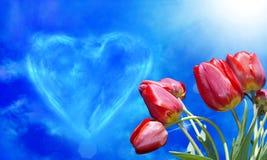 Cartão do amor Day fundo dos feriados com tulipas do ramalhete Imagens de Stock