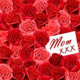 Cartão do aniversário ou do dia de matriz à mamã com rosas Imagens de Stock