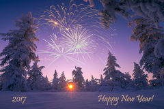Cartão do ano novo feliz com fogo de artifício, floresta e luz do norte Imagens de Stock