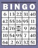 Cartão do Bingo Imagens de Stock
