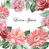 Cartão do convite com flores da aquarela Imagens de Stock