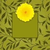 Cartão do cumprimento ou do convite do vetor Imagem de Stock
