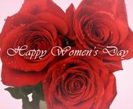 Cartão do dia das mulheres Rosas vermelhas no close up das gotas isolado no fundo cor-de-rosa Fotografia de Stock Royalty Free