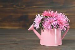 Cartão do dia de mães com flores cor-de-rosa Fotografia de Stock