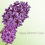 Cartão do dia de mães com lilás Fotografia de Stock Royalty Free