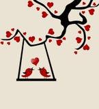 Cartão do dia de Valentim Imagens de Stock Royalty Free