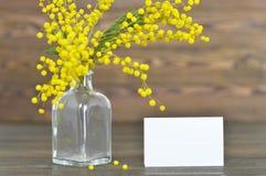 Cartão do dia de Women's com flores da mimosa Fotos de Stock