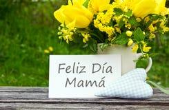 Cartão do dia do ` s da mãe imagem de stock royalty free