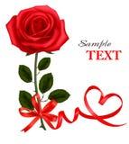 Cartão do dia do `s do Valentim. O vermelho da beleza levantou-se com curva Imagem de Stock Royalty Free