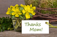 Dia do ` s da mãe Imagem de Stock Royalty Free