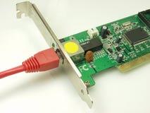 Cartão do Ethernet Fotos de Stock Royalty Free
