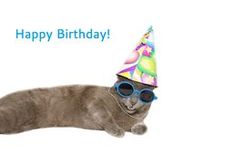 Cartão do feliz aniversario com gato Fotografia de Stock Royalty Free