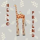 Cartão do girafa Fotografia de Stock