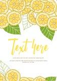 Cartão do limão Fotografia de Stock