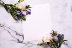 Cartão do modelo com plantas cartão e flores Imagens de Stock Royalty Free