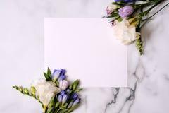 Cartão do modelo com plantas cartão e flores Imagem de Stock
