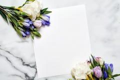 Cartão do modelo com plantas cartão e flores Fotos de Stock Royalty Free
