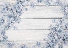 Cartão do Natal com as flores azuis bonitas em uma placa de madeira ilustração royalty free