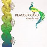 Cartão do pavão com elementos desenhados à mão Fotos de Stock Royalty Free