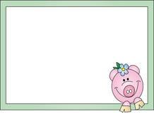 Cartão do porco Foto de Stock