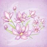 Cartão do roxo da flor Fotografia de Stock