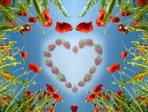 Cartão do Valentim como o coração com papoilas (14 de fevereiro, amor) Imagens de Stock