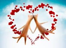Cartão do Valentim. Gatos com corações no céu Foto de Stock Royalty Free