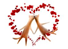 Cartão do Valentim. Gatos com os corações isolados no branco Fotos de Stock Royalty Free