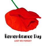 Cartão do vetor do dia da relembrança A fim de que não nós esqueçamos Flor vermelha realística da papoila ilustração royalty free