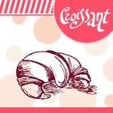 Cartão do vetor do croissant Cartaz desenhado à mão com elemento caligráfico Foto de Stock