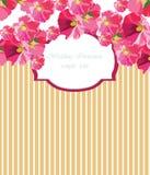 Cartão do vetor do vintage com a flor do gerânio da aquarela Fotografia de Stock