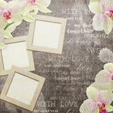 Cartão do vintage com as orquídeas para felicitações Foto de Stock