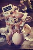 Cartão do vintage com os ovos da páscoa na cesta velha e no ra de beijo engraçado Fotografia de Stock