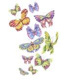 Cartão do vintage da aquarela com borboletas coloridas ilustração royalty free