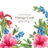 Cartão do vintage do convite com os mirtilos, cor-de-rosa ilustração royalty free