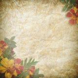 Cartão do vintage para o feriado com flor Imagem de Stock