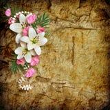 Cartão do vintage para o feriado com lírio cor-de-rosa Imagens de Stock Royalty Free