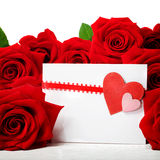 Cartão dos corações com as rosas vermelhas bonitas Foto de Stock