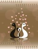 Cartão dos gatos Imagem de Stock