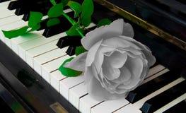 Cartão dos pêsames - aumentou no piano Foto de Stock