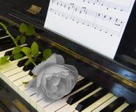 Cartão dos pêsames - aumentou no piano Imagens de Stock Royalty Free