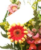 Cartão e flores Fotografia de Stock Royalty Free