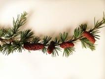 Cartão elegante para o feriado de inverno fotografia de stock