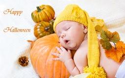 Cartão feliz de Halloween Fotografia de Stock