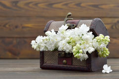 Cartão feliz do aniversário com as flores brancas na caixa do vintage Imagem de Stock Royalty Free