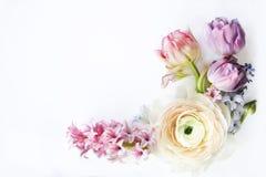 Cartão festivo do convite com flores bonitas Imagens de Stock Royalty Free