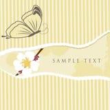 Cartão floral com borboleta ilustração stock
