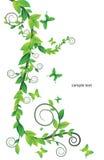 Cartão floral com borboletas Imagens de Stock